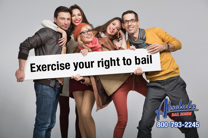 Exercise Your Right to Bail