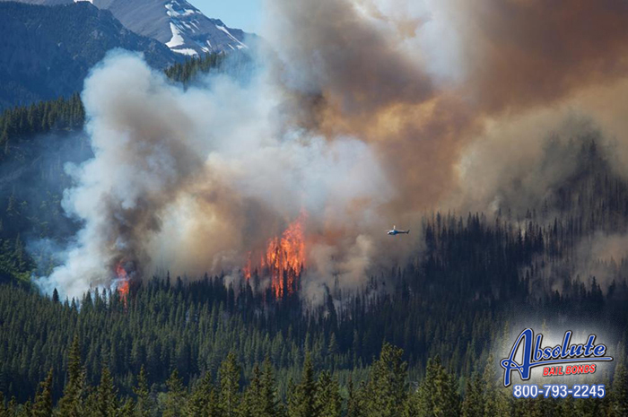 California is on Fire, Again