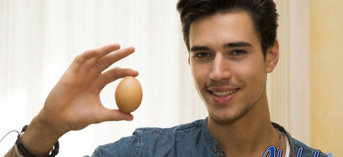 Vandalism and Egging