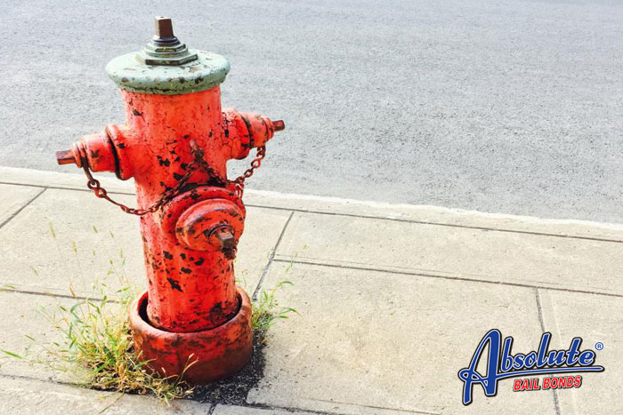 absolute bail bonds fire hydrant